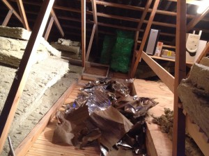 20140126-insulating-my-attic-02