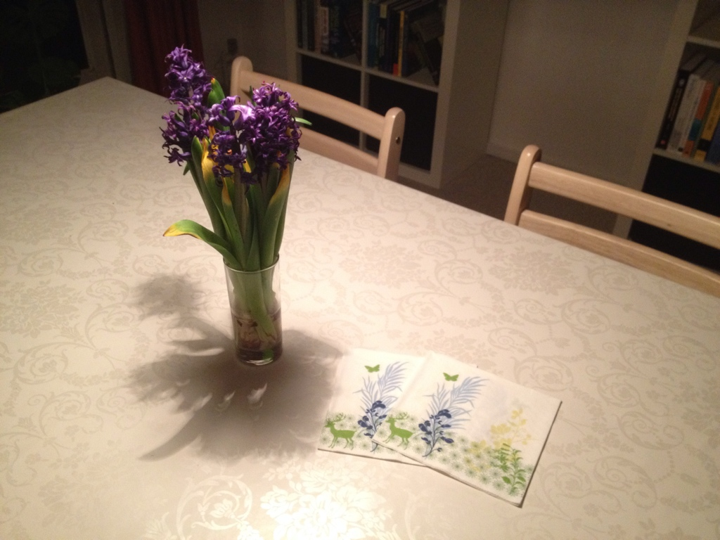 20140221-hyacinths-on-my-dinner-table